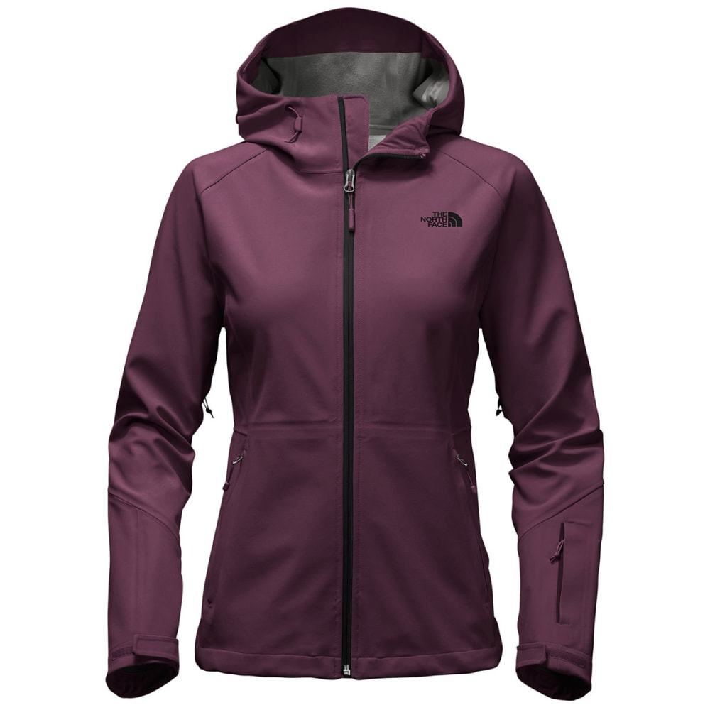 THE NORTH FACE Women's Apex Flex GTX Jacket - NXE-BLACKBERRY WINE