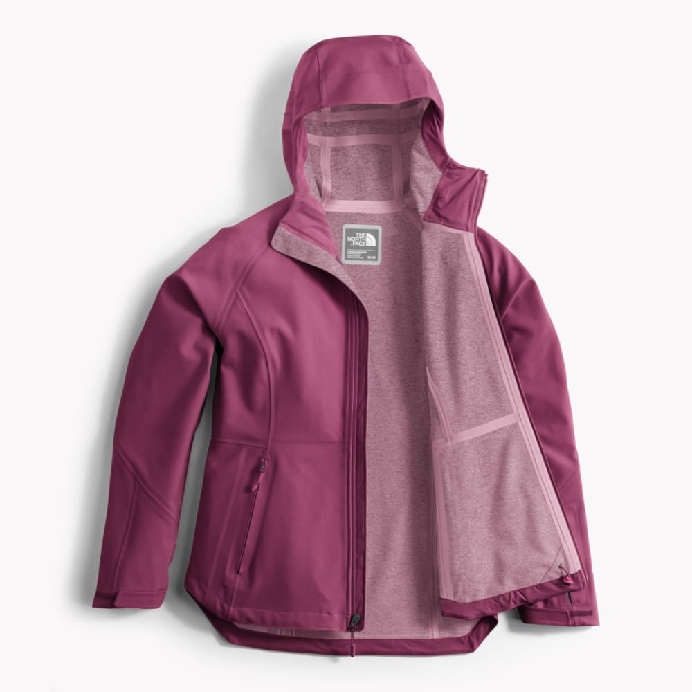 bf07f53b425 THE NORTH FACE Women s Apex Flex GTX Jacket - Eastern Mountain Sports