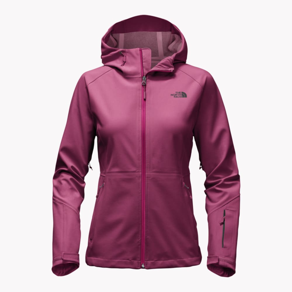 THE NORTH FACE Women's Apex Flex GTX Jacket - UAY-AMARANTH PURPLE