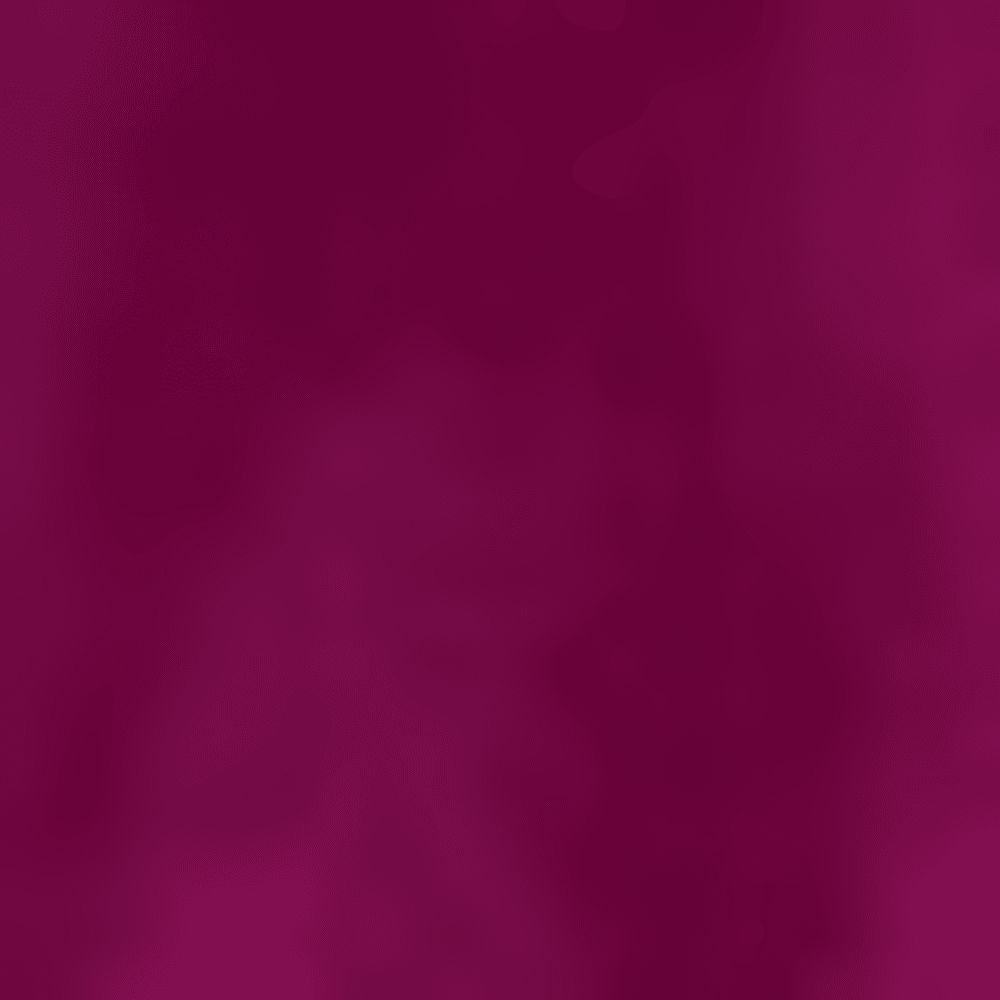 519-VIOLET GLOBAL WA