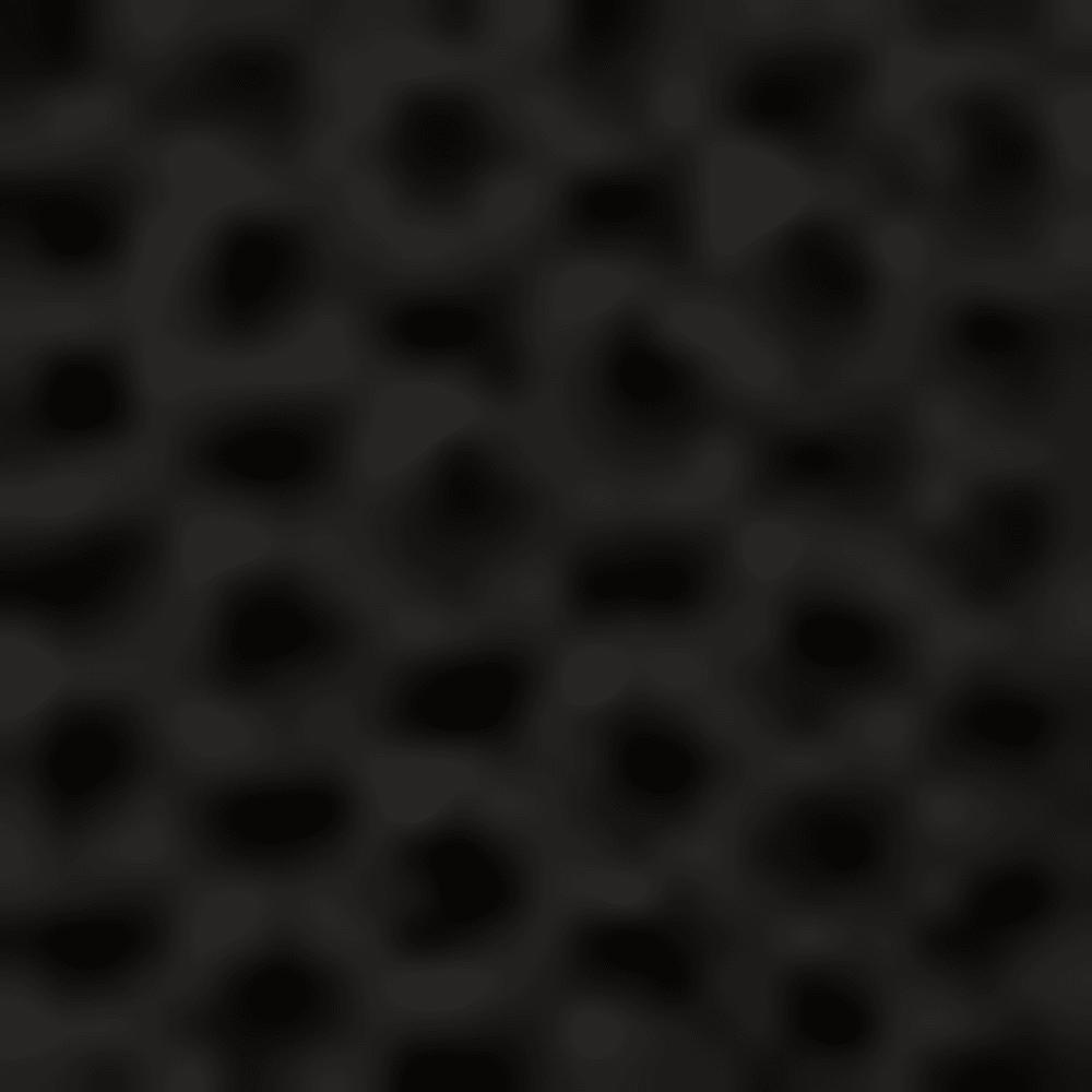 BLACK/RC36