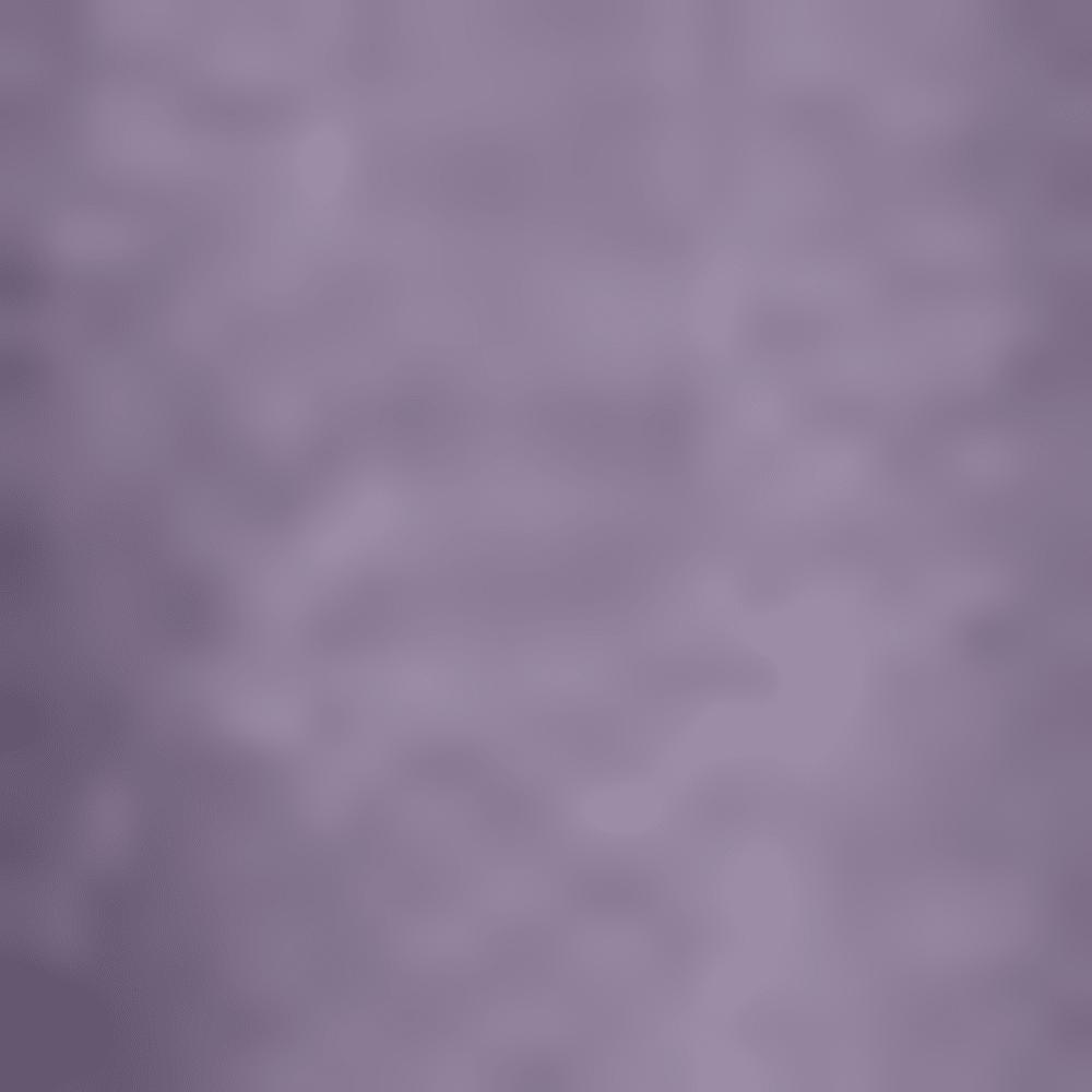 PUMN-PURPLE MNTN
