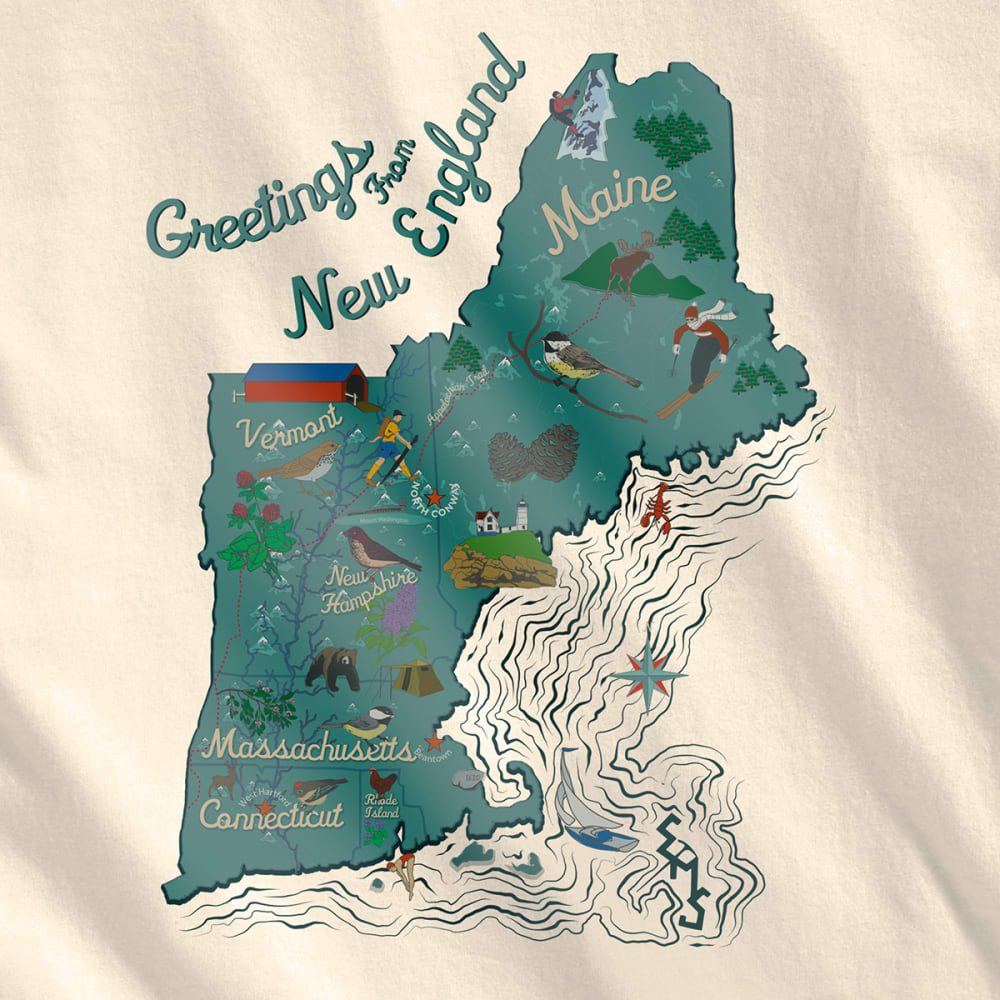 EMS Women's Visit New England Graphic Tee - TURTLEDOVE