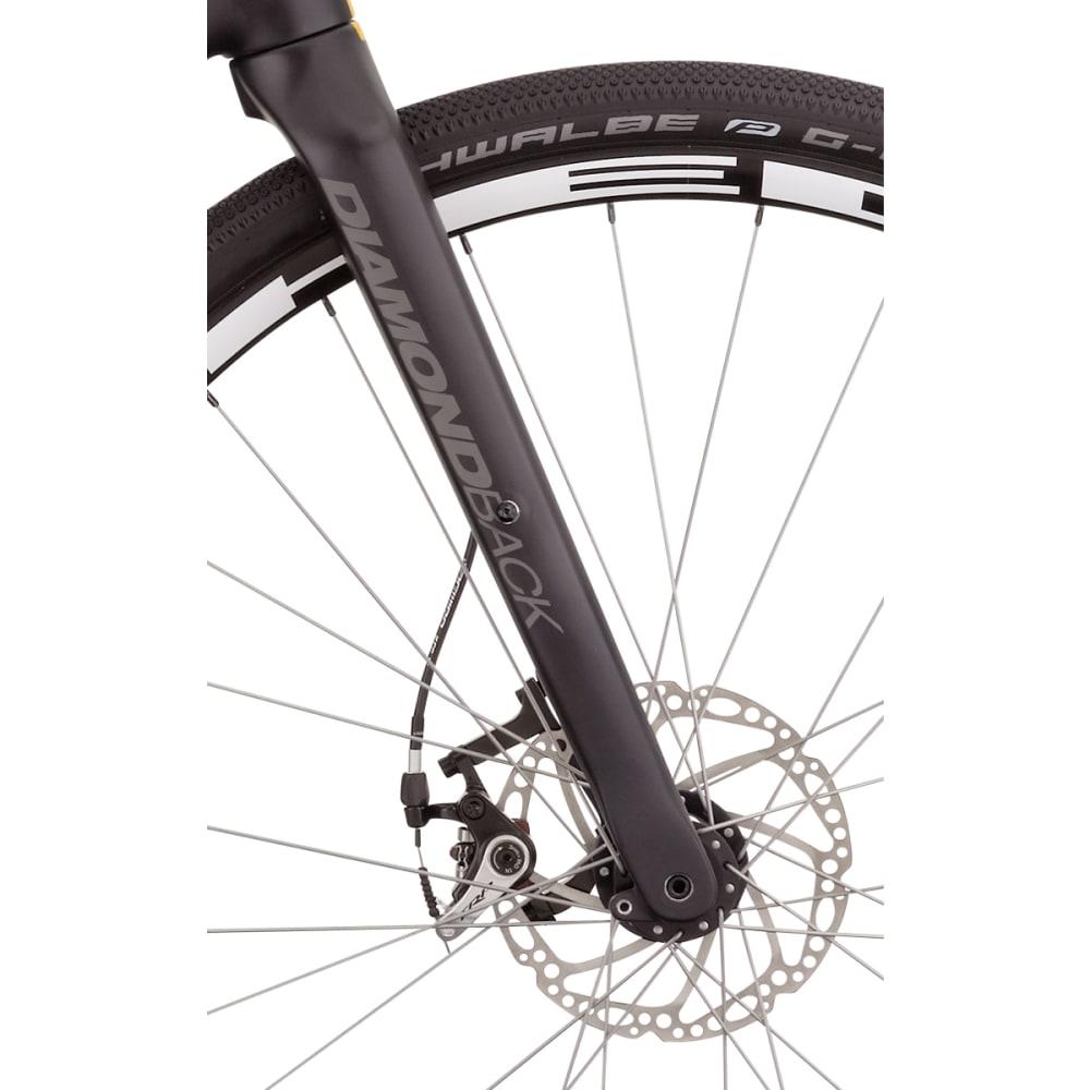 DIAMONDBACK Haanjo Comp Carbon Road Bike - RAW CARBON