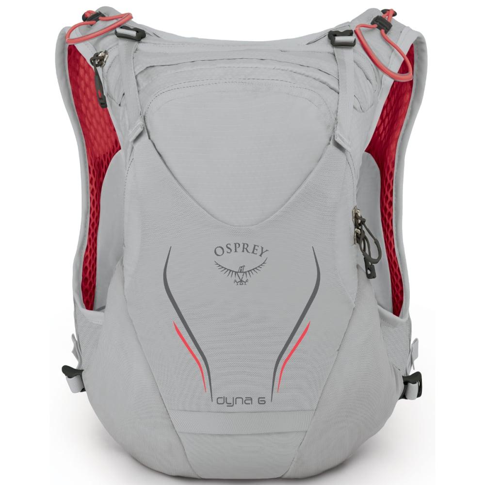 OSPREY Dyna 6 Pack - SILVER SPARK