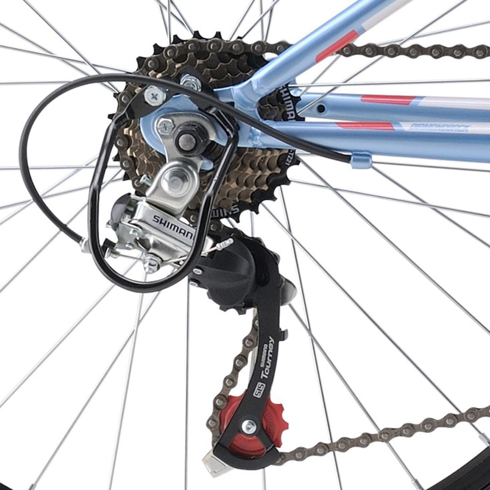 DIAMONDBACK Girls' Tess 24 Mountain Bike - BLUE