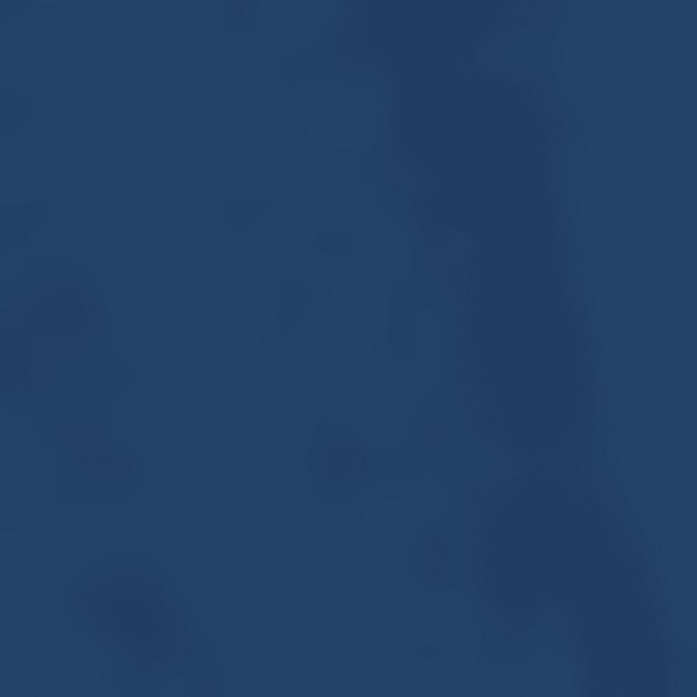 BG8 - DISH BLUE