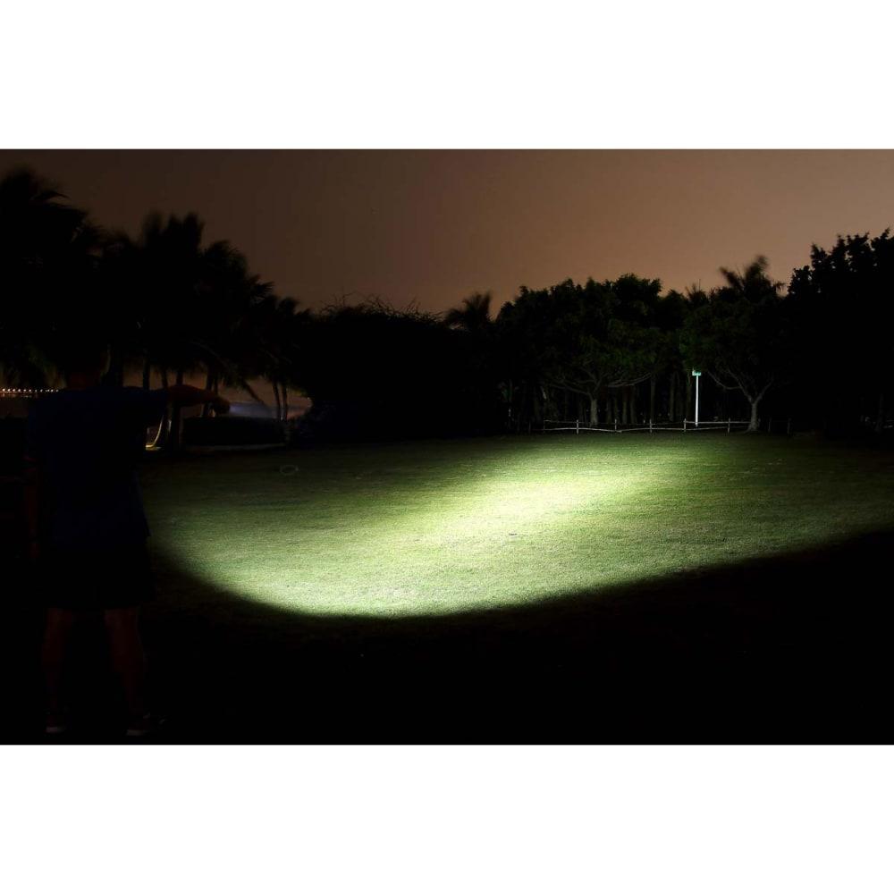 FENIX LD22 Flashlight, 300 Lumens - BLACK