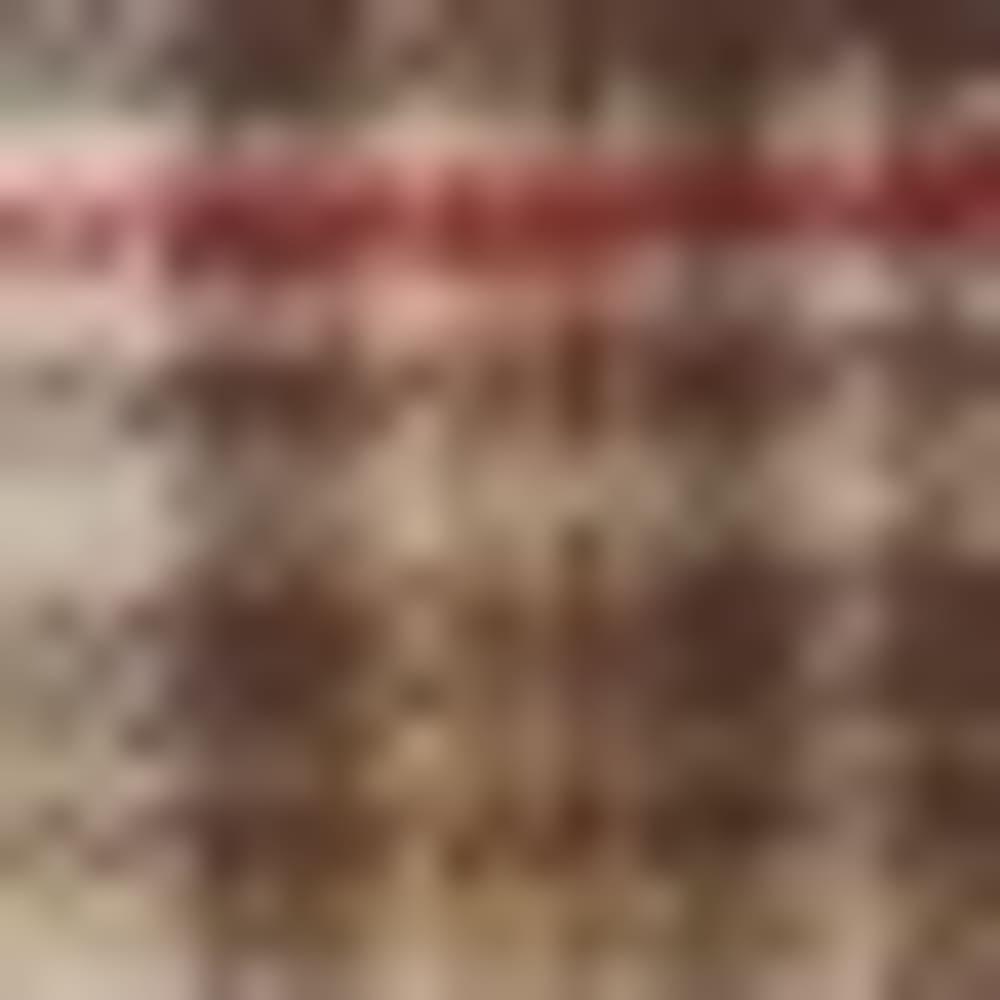 243-CROUTON MLTI PLA