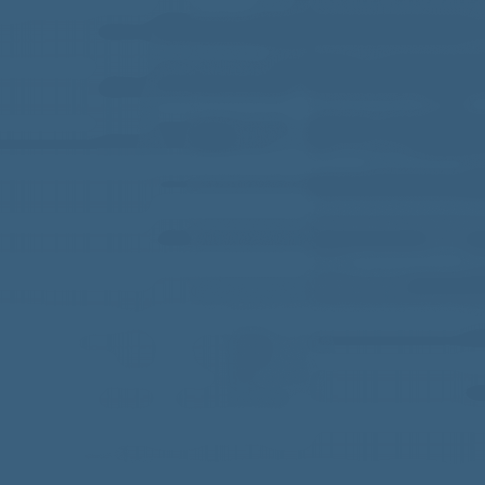 407-BLUE HERON