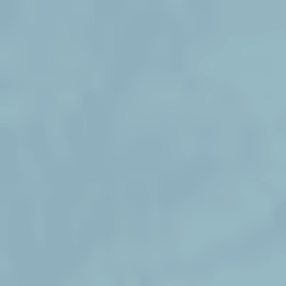 WNL-PROVINCIAL BLUE
