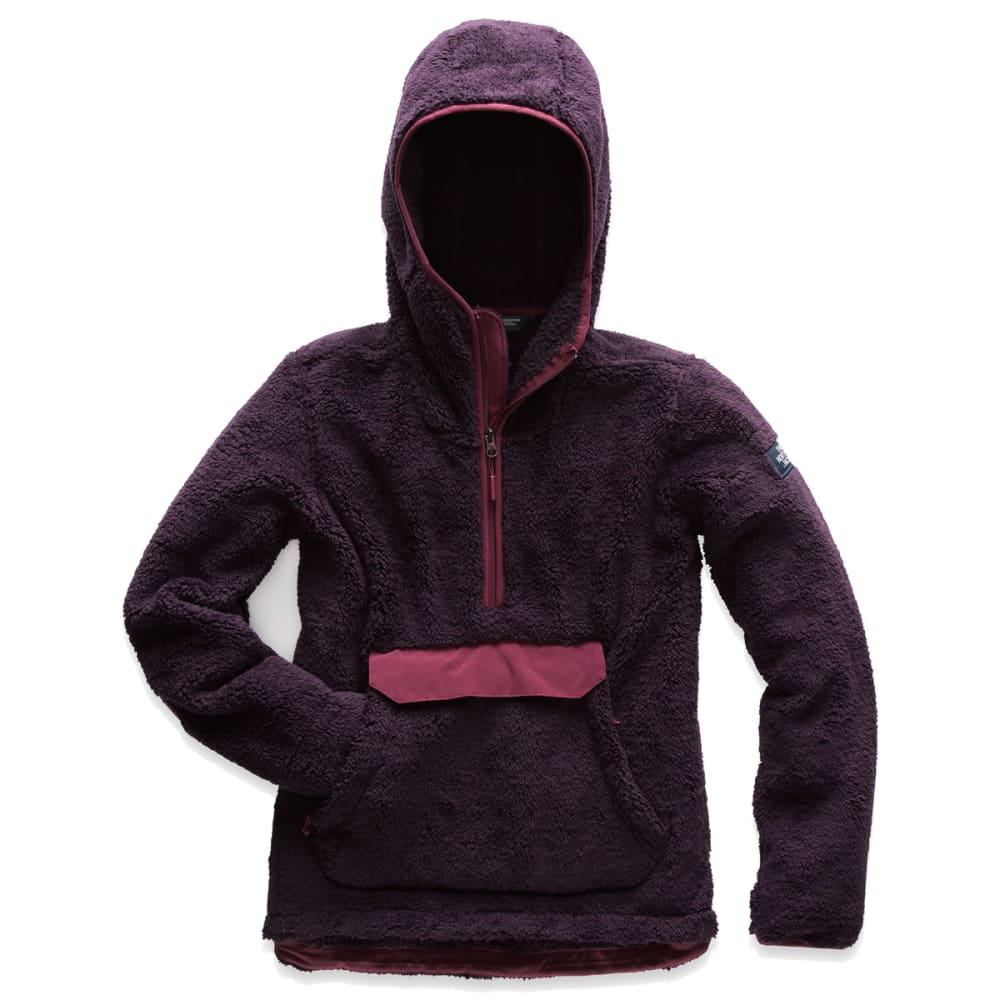 e5d42db5a THE NORTH FACE Women's Campshire Pullover Hoodie
