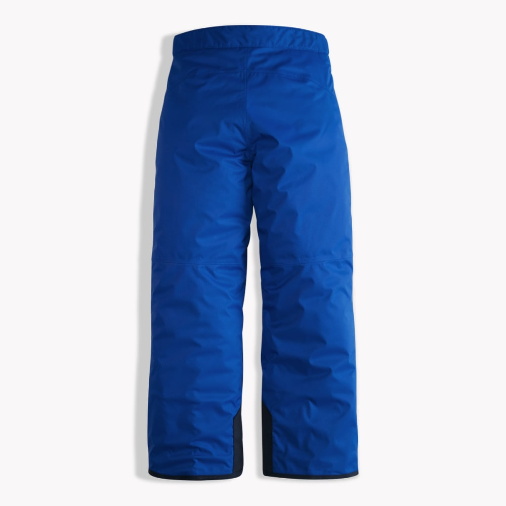 ffbb80059 THE NORTH FACE Boys' Freedom Insulated Snow Pants