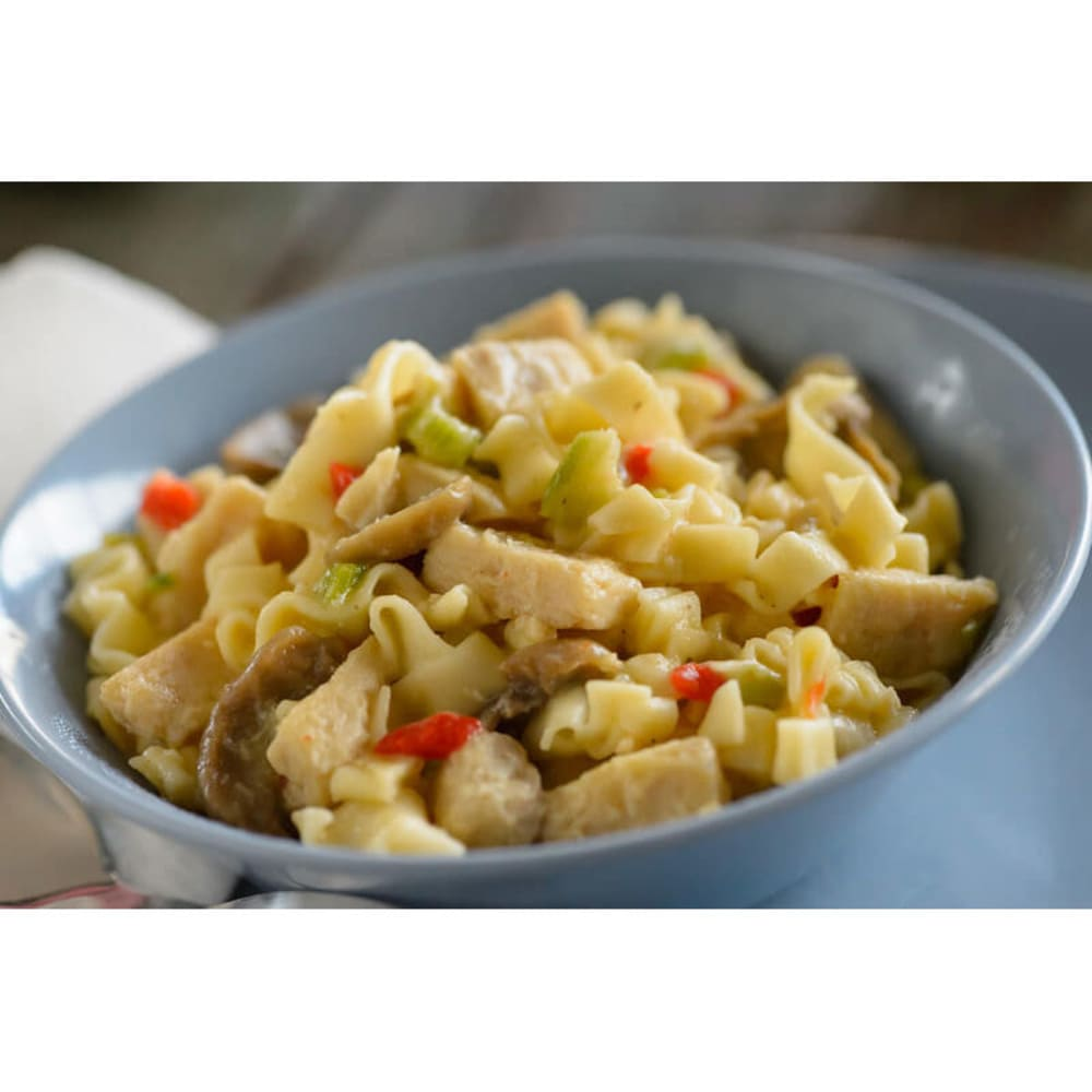 LIBERTY MOUNTAIN SPORTS Homestyle Chicken Noodle Casserole - NO COLOR