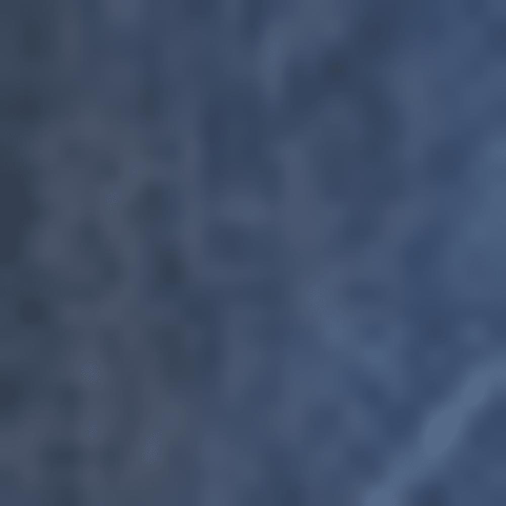 PANDA 0053