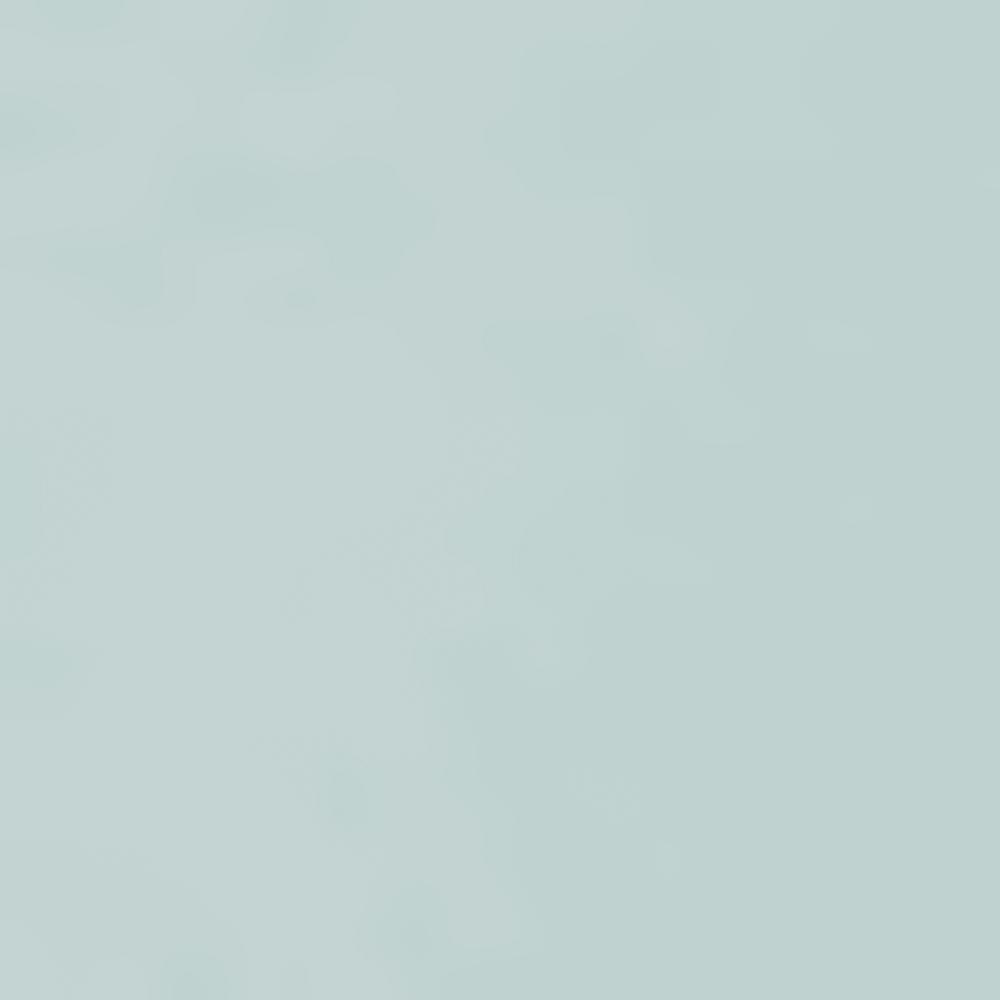 907-SEA ICE