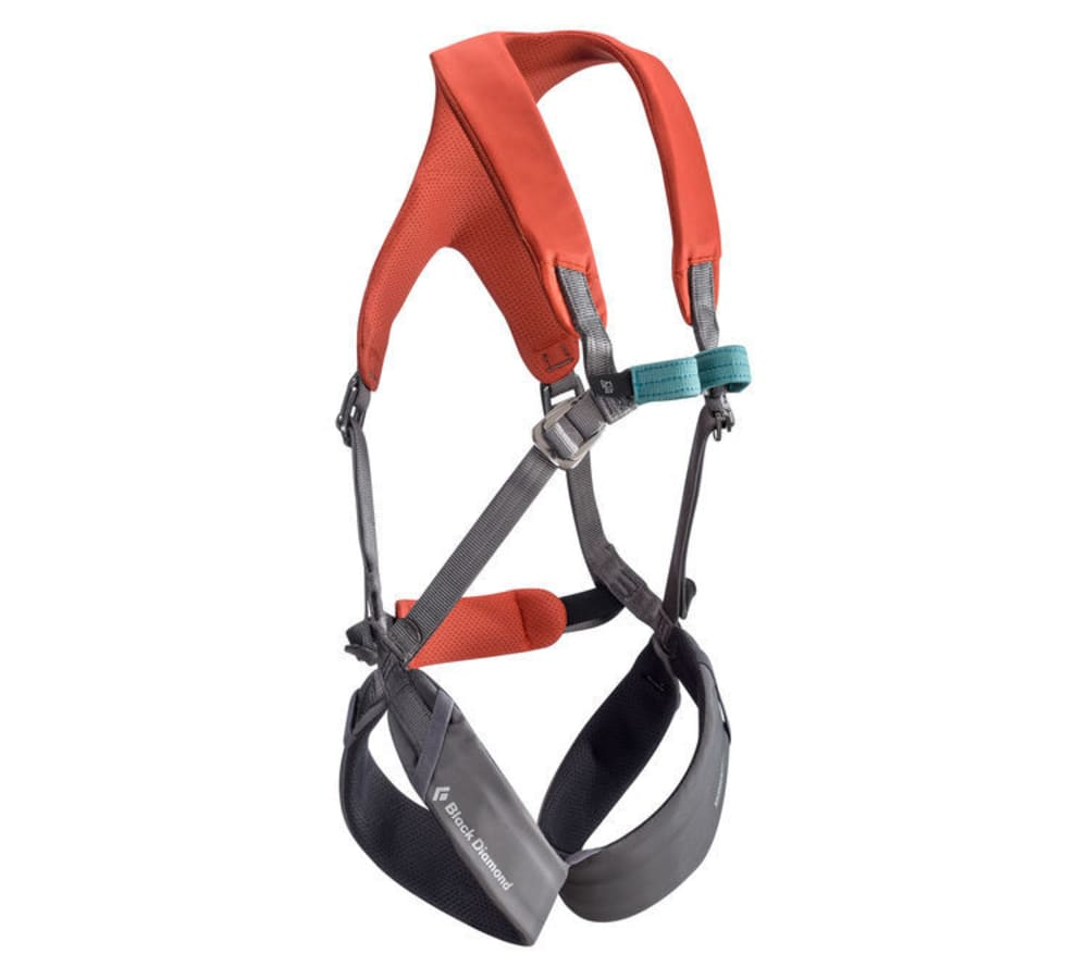 BLACK DIAMOND Kid's Momentum Full Body Harness - OCTANE/ASH