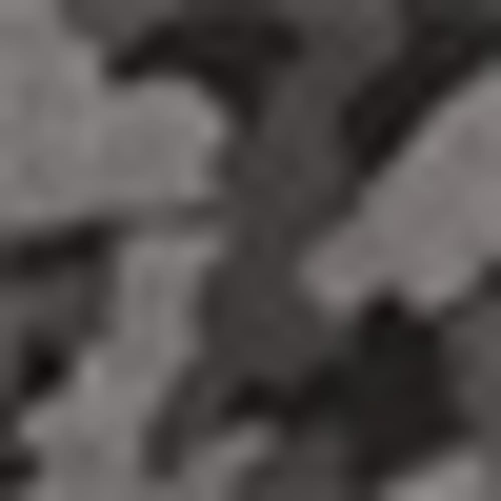CAMO15-14 GRYCAMOPRN