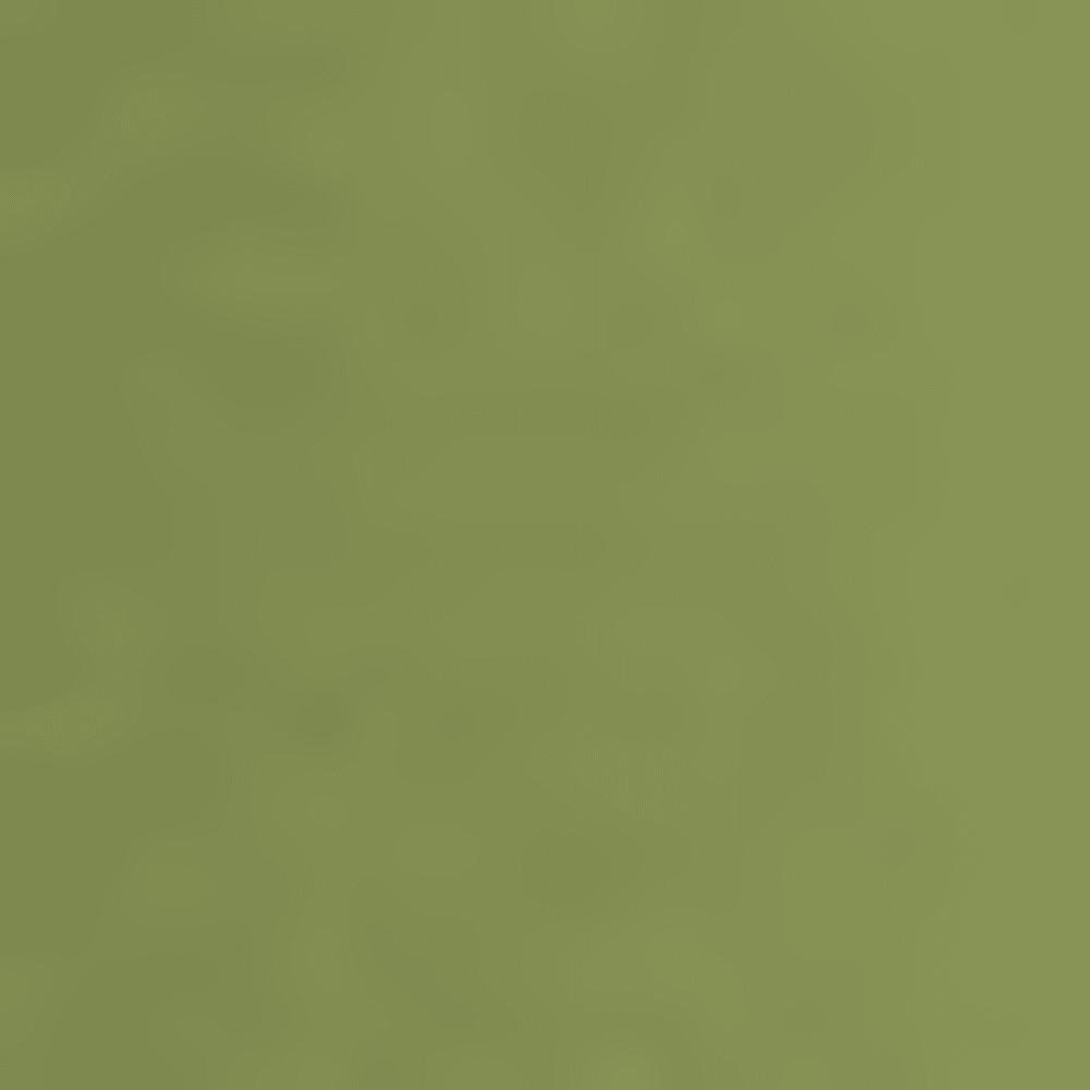 OLIVE P16306