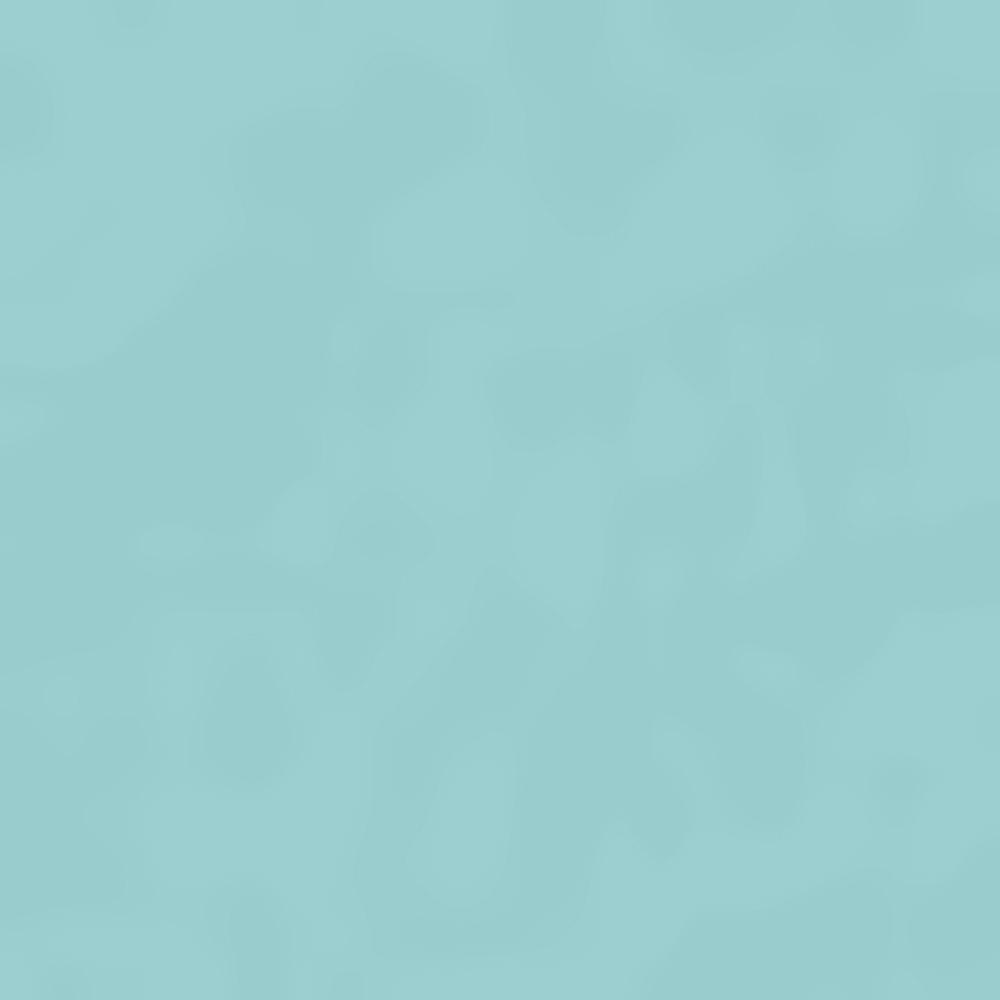 341-ICEBERG HTHR