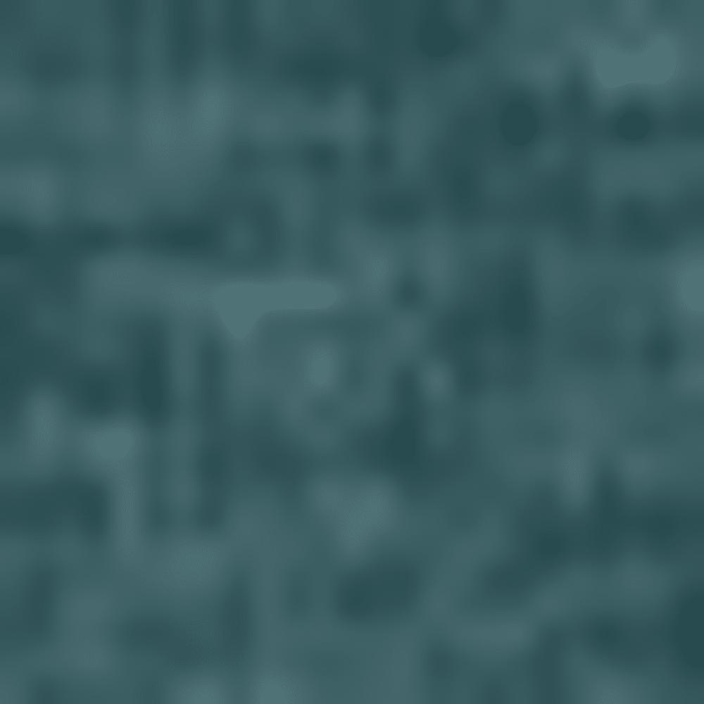 POSEIDON-343