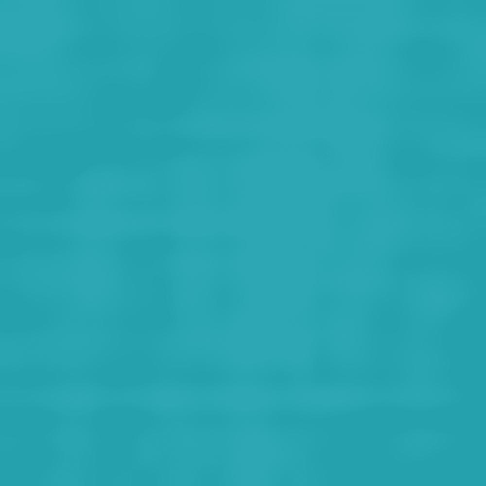 2QX-BRISTOL BLE HTR