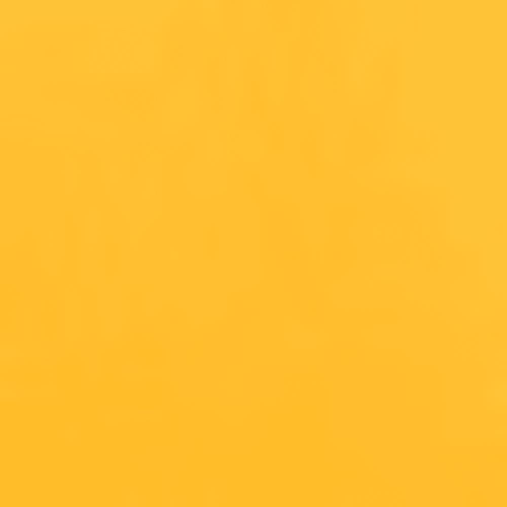 SUMMIT GOLD/TNF BLK
