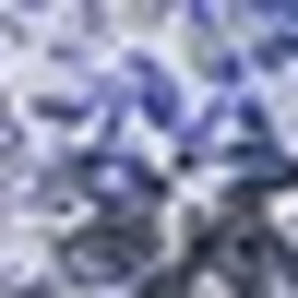 DEEP BLUE PRINT