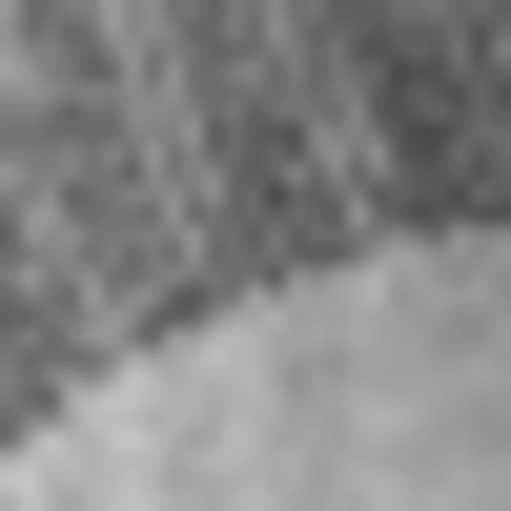 003-CHARCOAL