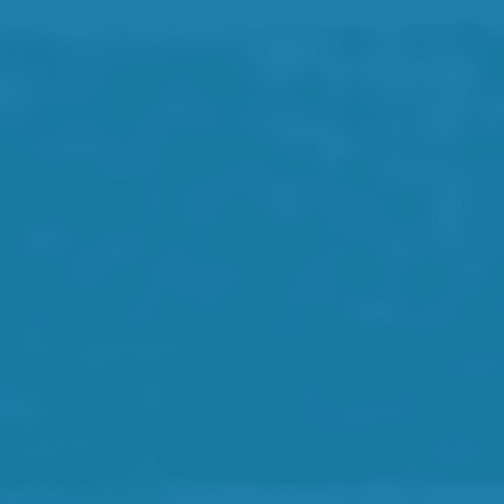 SAGEBRUSH BLUE
