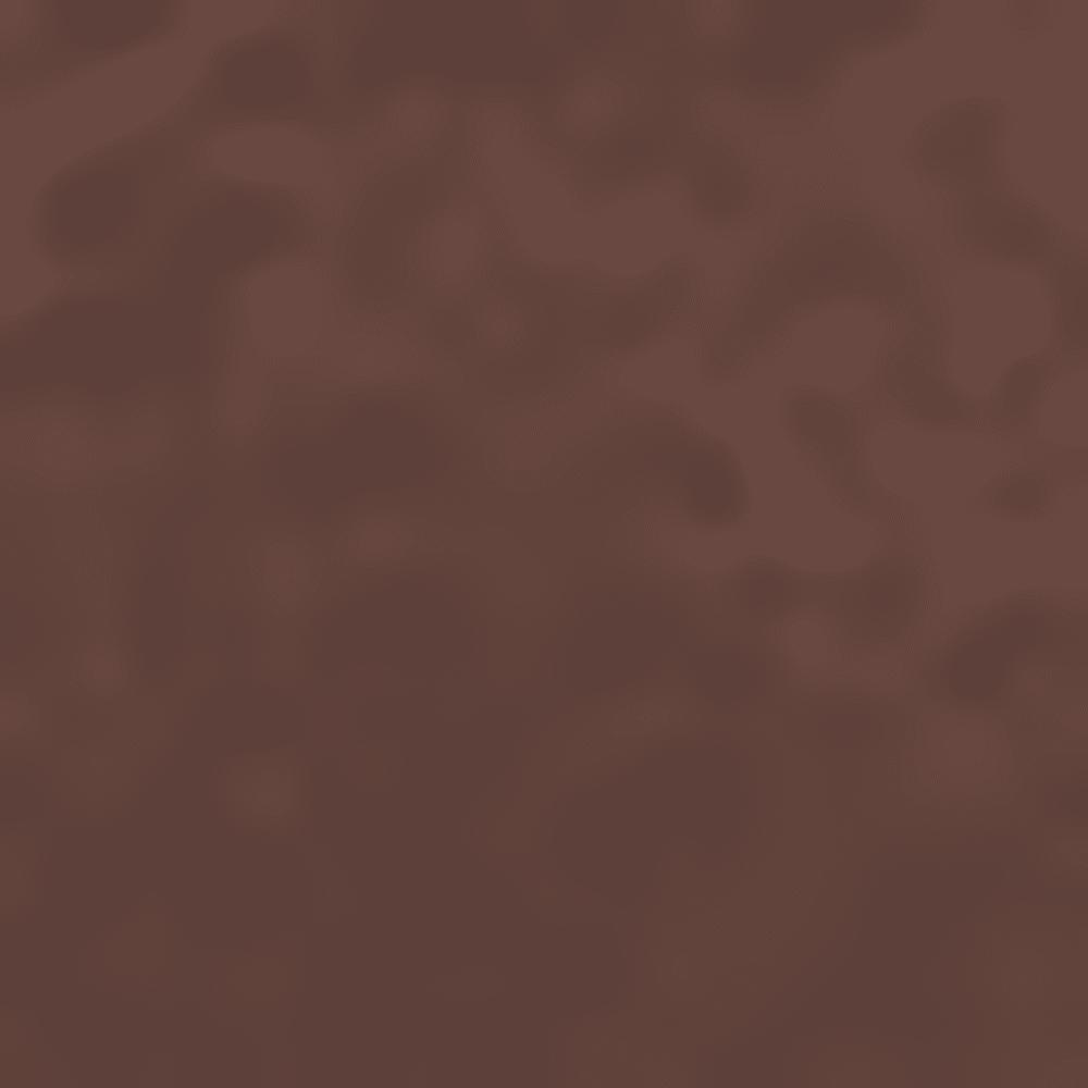 TORTOISE/PLRBRN