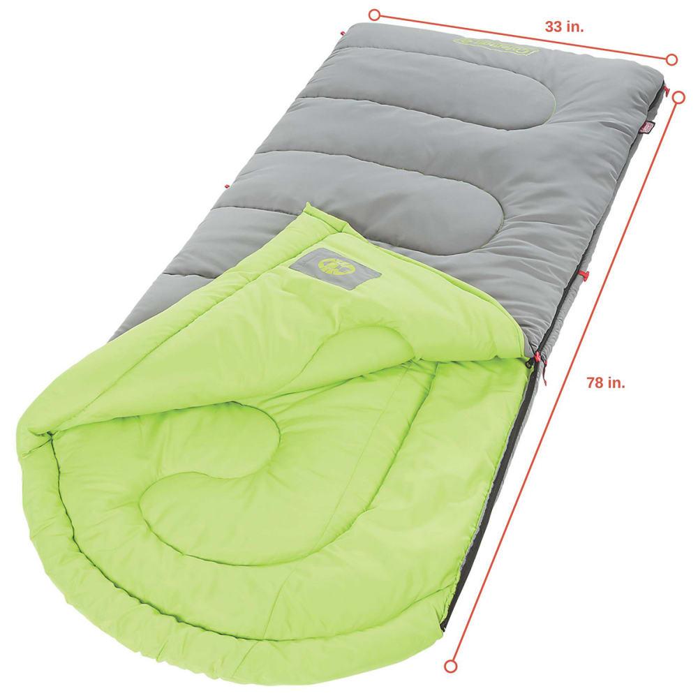 COLEMAN Dexter Point 40 Sleeping Bag, Regular - GREY
