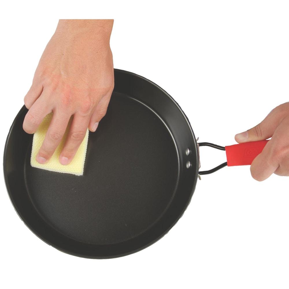 COLEMAN 9.5 in. Rugged Steel Frying Pan - BLACK