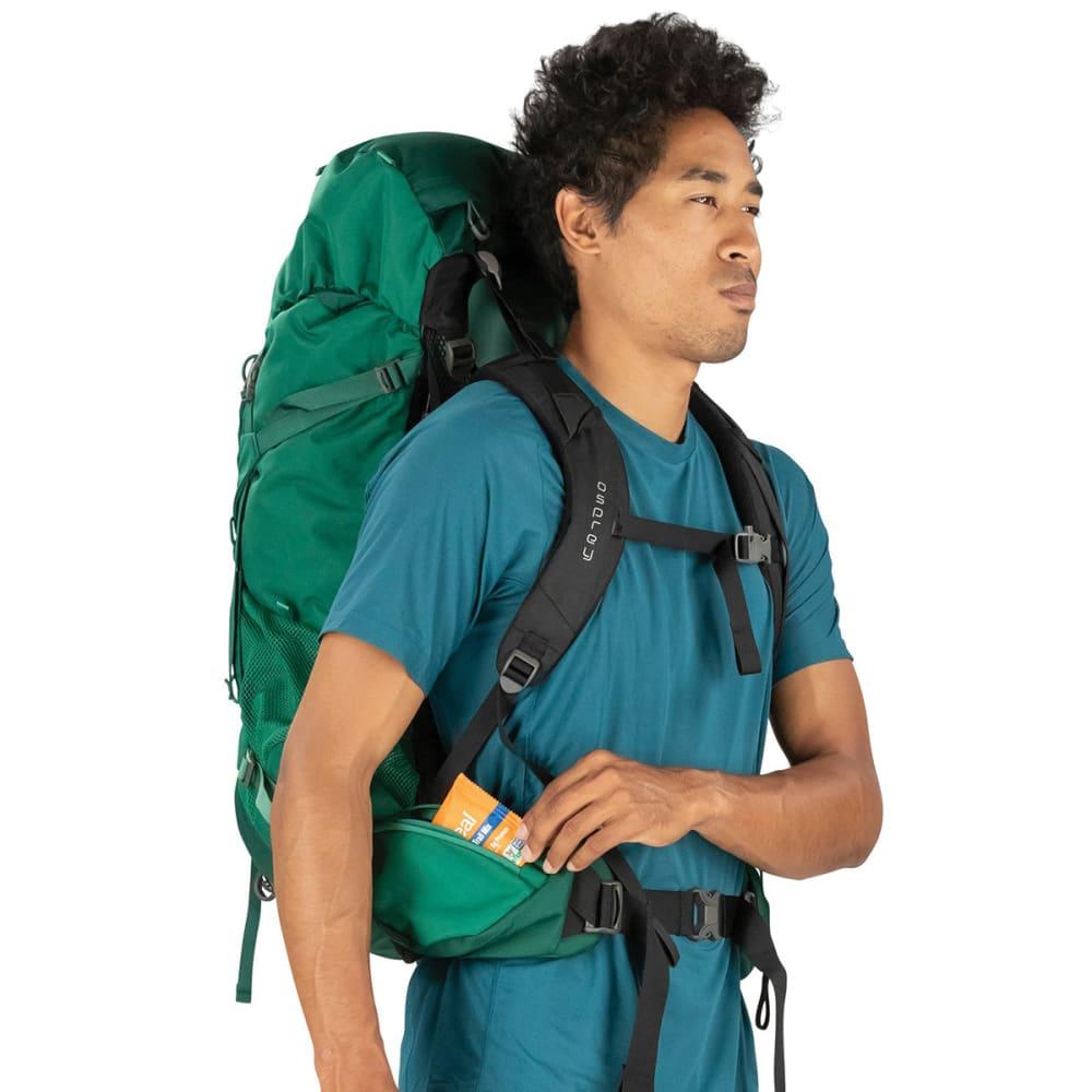 OSPREY Men's Rook 65 Pack - MALLARD GREEN