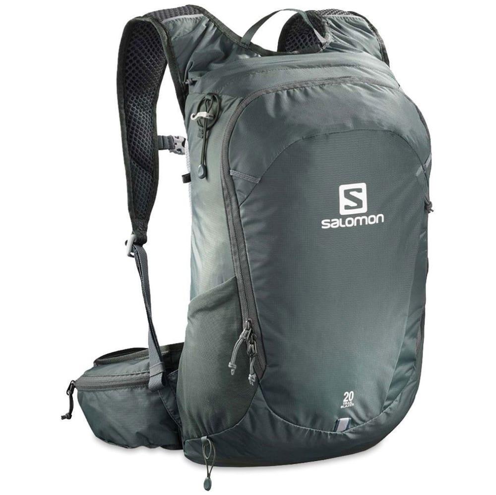 SALOMON Trailblazer 20 Pack - URBAN CHIC/ALLOY