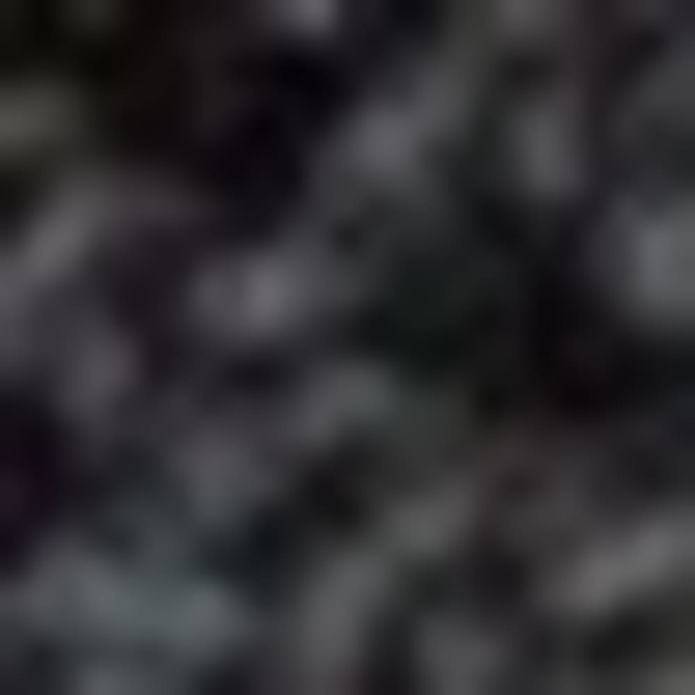 BLACK-J48597
