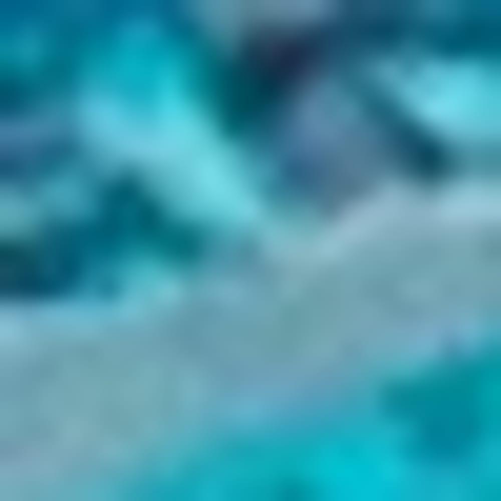 CAPRI/OCEAN J49052