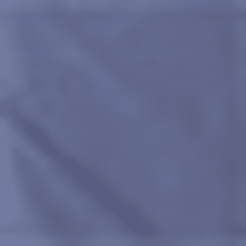 1421 STEEL BLUE