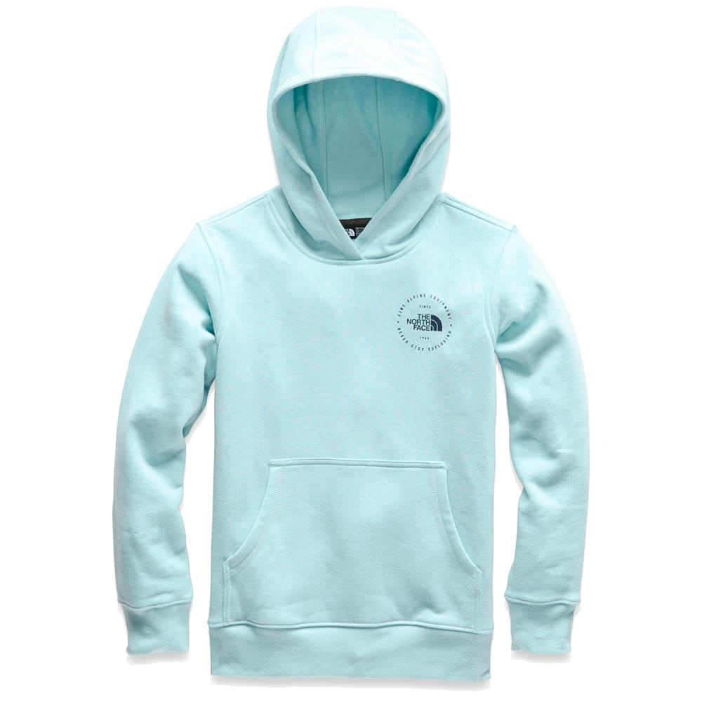 THE NORTH FACE Boys' Logowear Pullover Hoodie - 8EB CANAL BLUE