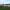 Etangs de Bruges et détente autour des bassins