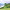 Boucle des Dioux et joli balai des parapentes | Décathlon Outdoor