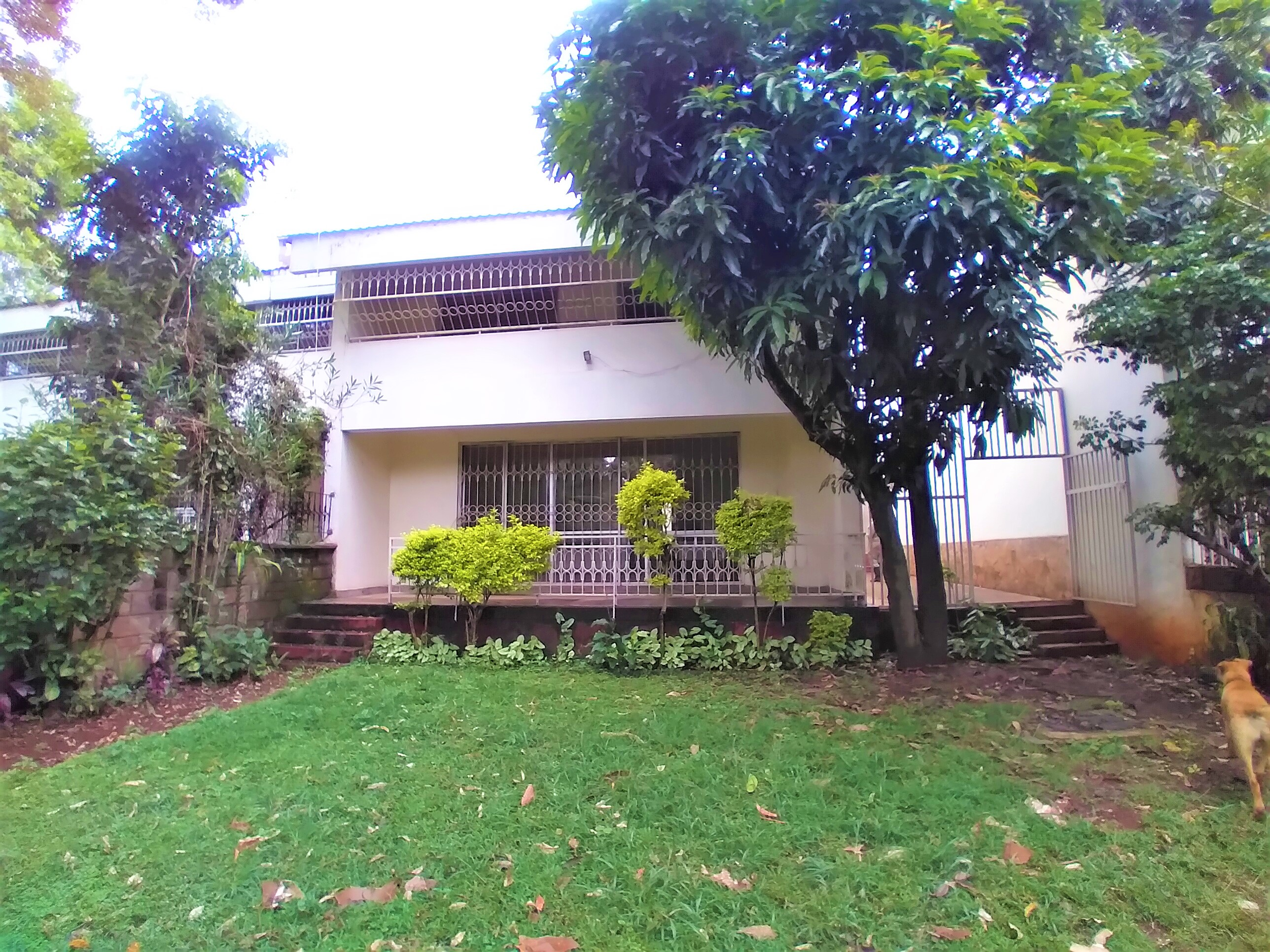 4 Bedroom plus Dsq Townhouse in Peponi Gardens