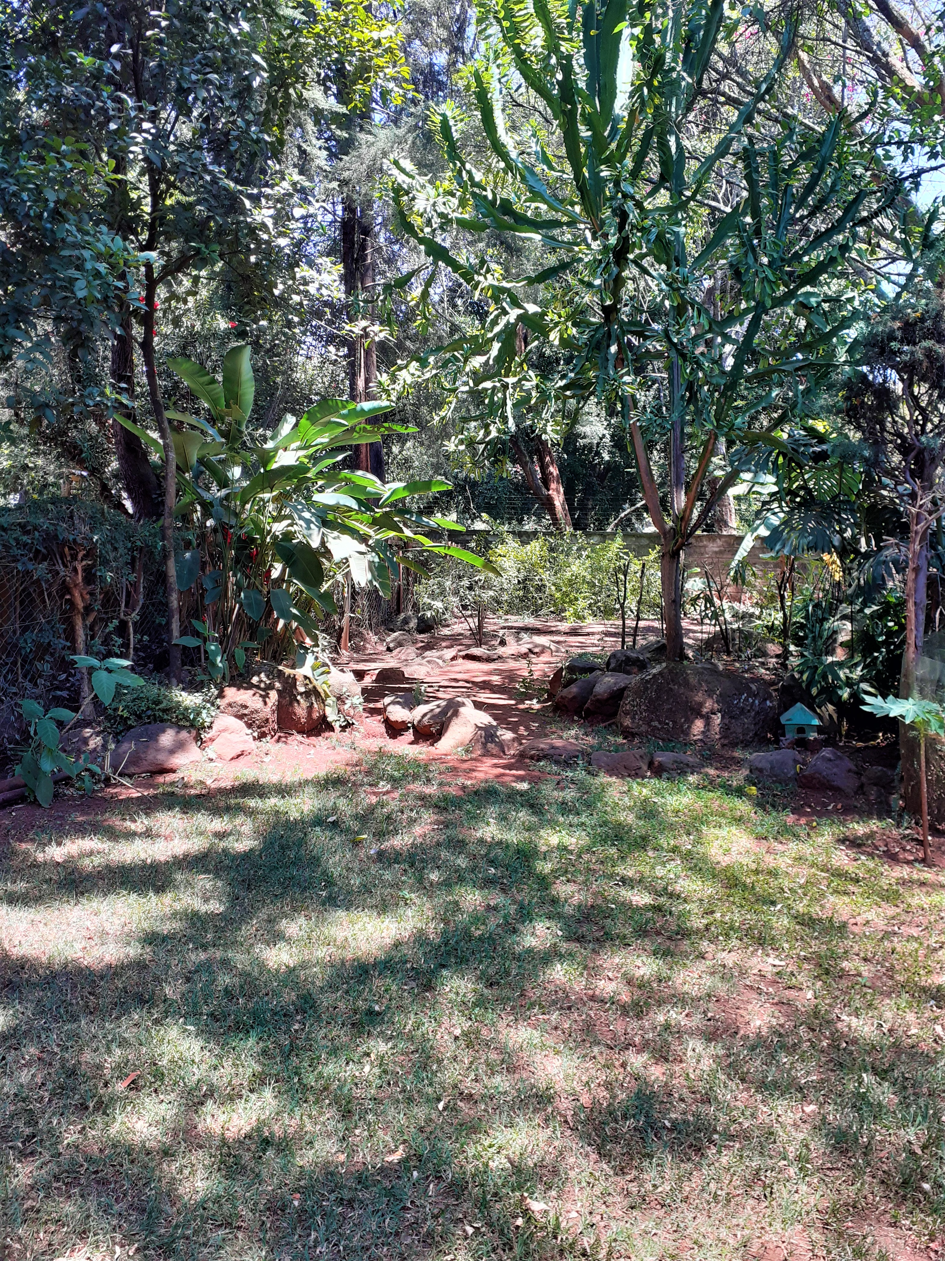 Unfurnished 4 Bedroom plus Sq Townhouse In Lavington area