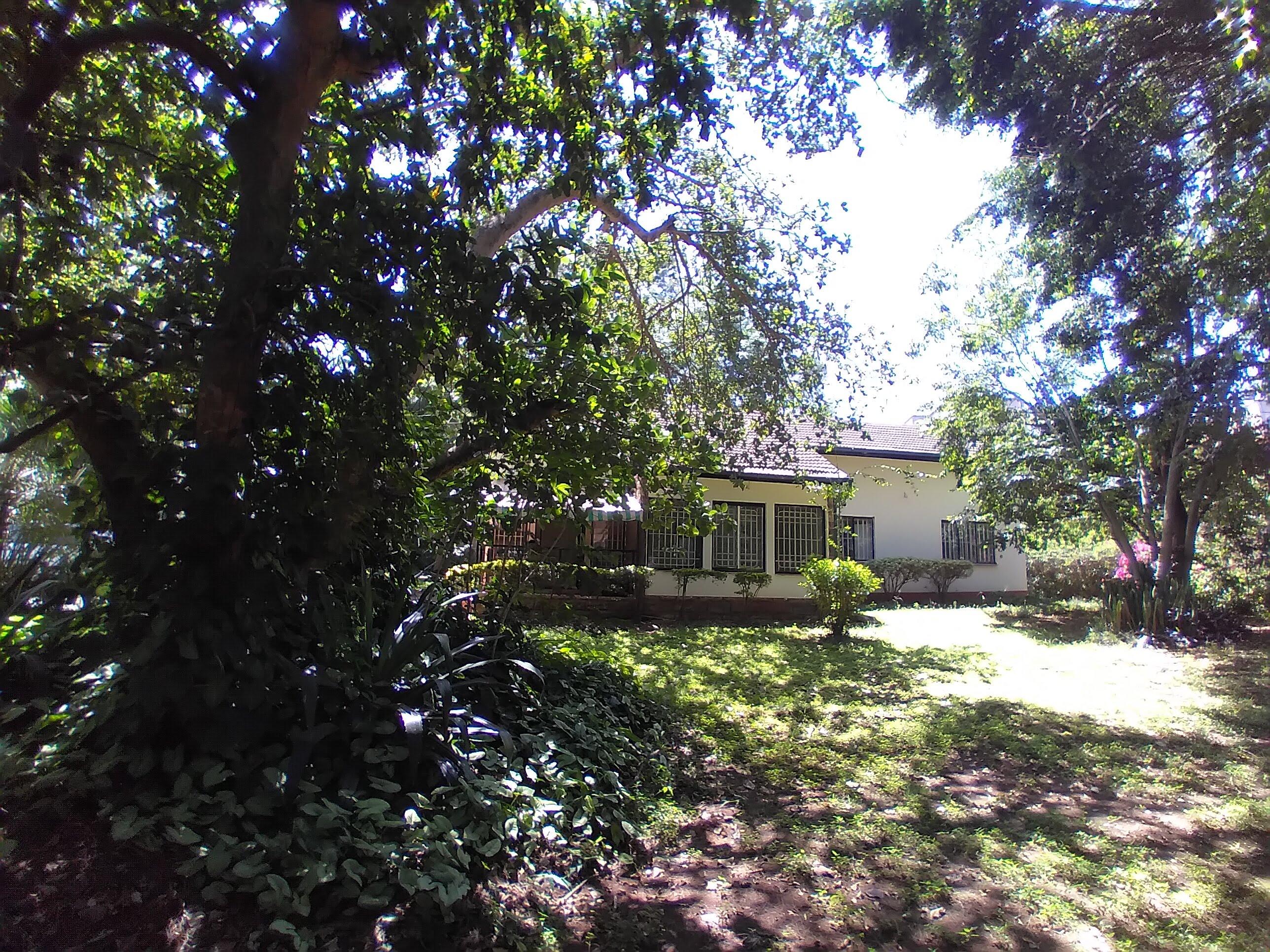 Unfurnished 3 Bedroom plus Dsq Cottage in Lavington area.