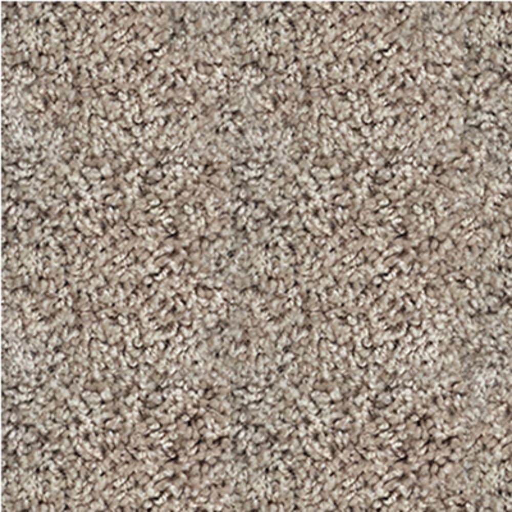 5504396 Shaw Ride it Out Cut Pile Carpet