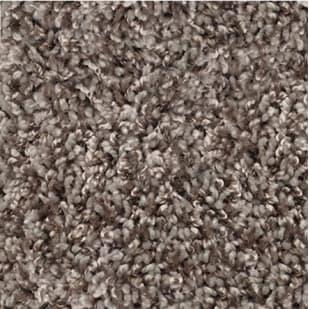 5504397 Shaw Color Flair Twist Carpet