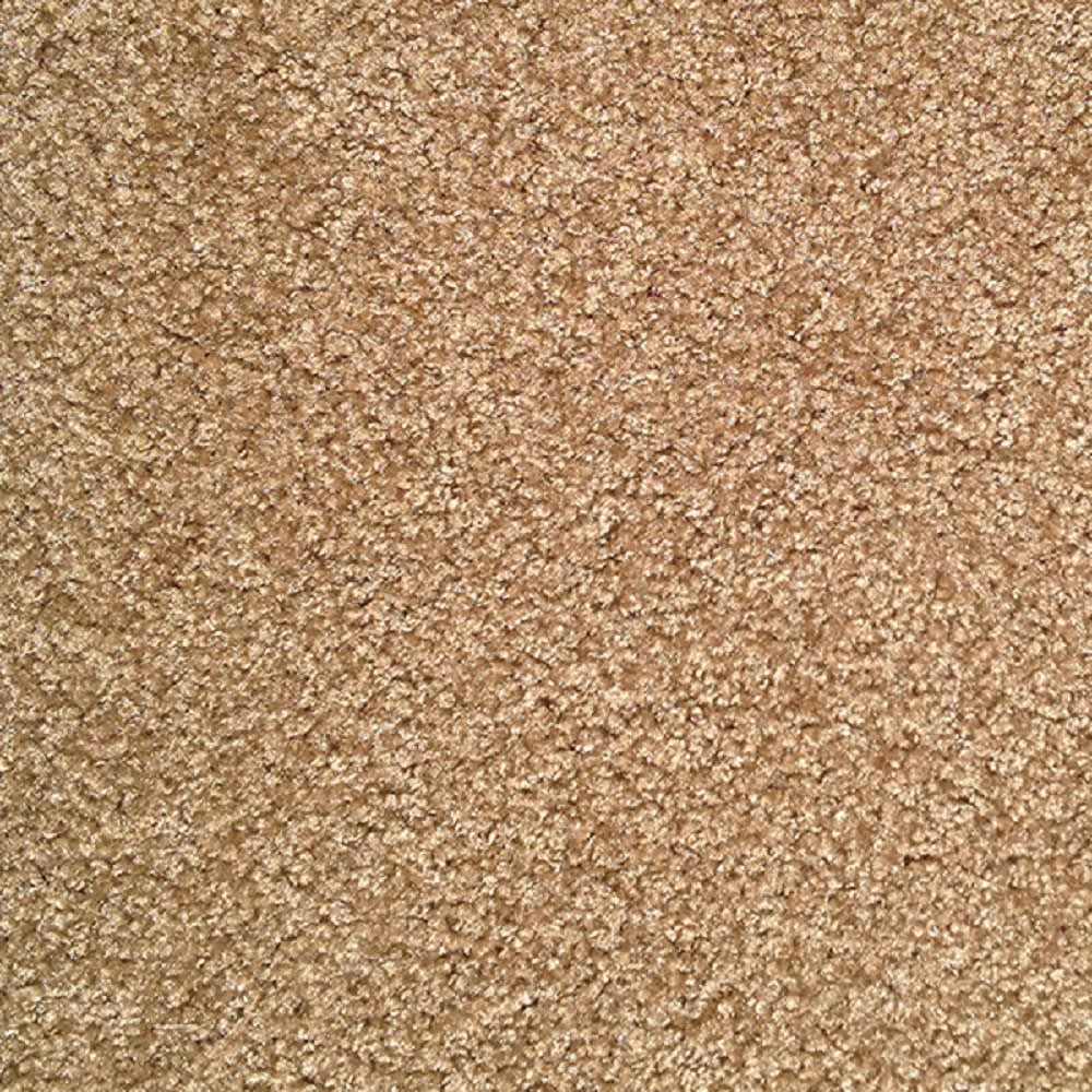 "Mojo II Brownwood 15'3"" Carpet"