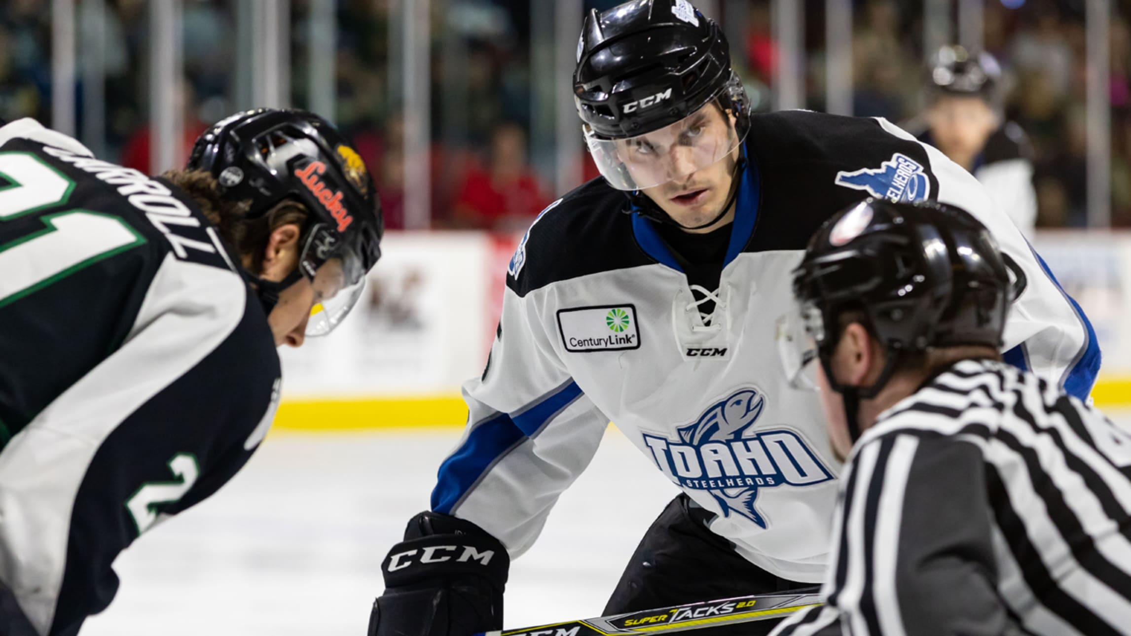 Image result for idaho steelheads images