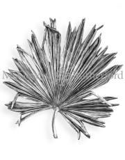 Extra Large Antique Silver Palm Leaf Wall Decor
