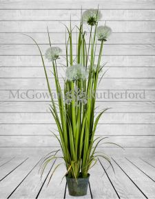 Ornamental Grasses in Galvanised Pot - Style 3